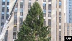 Ngrihet pema e Vitit të Ri në qendër të Nju Jorkut