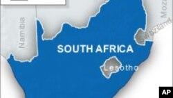 Les rangers du parc Kruger ont découvert un trou dans la clôture du campement par lequel la hyène aurait pu s'introduire.
