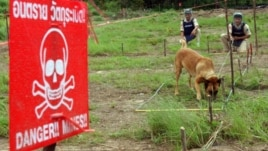 According to the International Campaign to Ban Landmines, 156 countries have signed an international mine ban and 108 have signed a convention against cluster munitions.