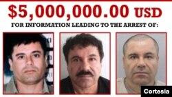 Autoridades internacionales, DEA y FBI están tras la pista de Joaquín Guzmán Loera considerado el hombre más buscado de México.