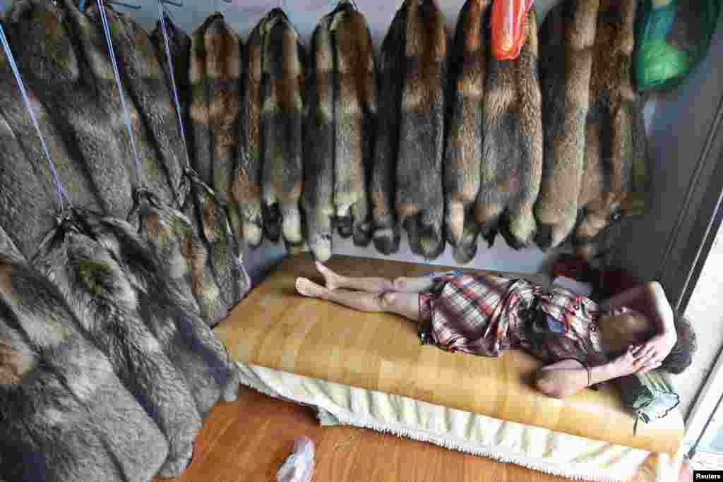 Nhà buôn nằm nghỉ bên trong một cửa hàng bán lông chồn của mình ở chợ lông thú, thành phố Trùng Phúc, tỉnh Chiết Giang, Trung Quốc.