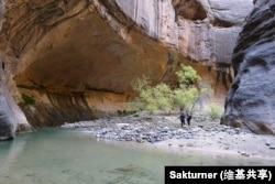 Hikers in The Narrows