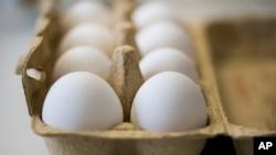 Les œufs sont conservés dans un laboratoire chimique et vétérinaire du bureau d'investigation de Krefeld, en Allemagne. 7 Août 2017