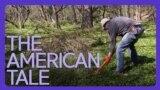 [아메리칸 테일] 토종 식물 지킴이 '위드 워리어'