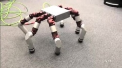 Modular Robot Getting Closer to Reality