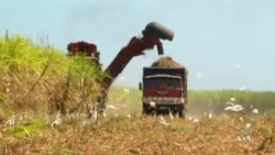 US Complains About China Farm Trade Practices