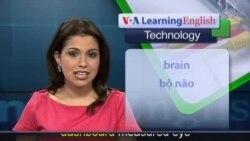 Anh ngữ đặc biệt: High Tech Future (VOA)