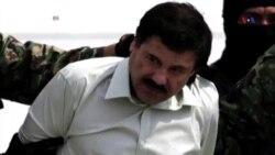 Narko-kartel başçısı El Çapo Quzman yaralanıb