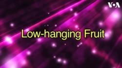 «Английский за минуту»: low hanging fruit