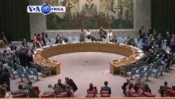 Inteko ishinzwe umutekano kw'isi ya ONU yemeje kugabanya umubare w'abasilikare b'amahoro muri Darfur