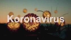 Koronavirus issiq haroratga chidamsizmi?