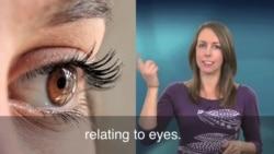 一分钟美语 See Eye to Eye