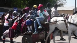 Thousands of Gambians Flee Ahead of Presidential Showdown