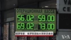 经济专家: 俄罗斯面临长期衰退痛苦