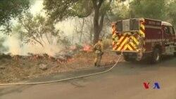 托馬斯大火已成1932年以來加州最大野火