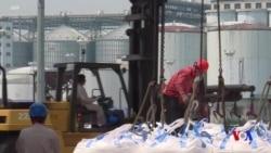 對華大豆出口增加 美國1月貿易逆差收窄超預期 (粵語)