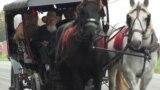 Landmark: Amish, Masyarakat Anti Modernitas