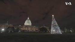 """Як """"Щедрик"""" став символом Різдва у США. Відео"""