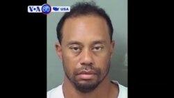 Manchetes Americanas 30 Maio: Tiger Woods culpa receita médica e nega ter conduzido sob efeito do álcool