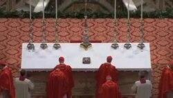枢机主教选举新教宗的秘密会议进入第二天