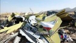 埃航墜機調查報告公佈