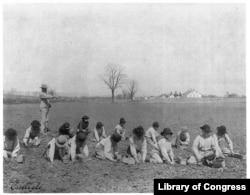 Boys digging for potatoes at Carlisle Industrial Indian School. Photo by Francis Benjamin Johnston, 1901.
