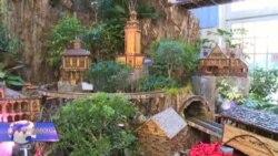 ბოტანიკური ბაღის საშობაო გამოფენა