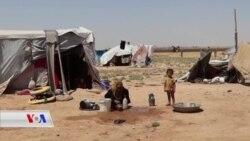 Li Kampên Bakur û Rojhilata Sûrîyê Koçber ji Birçîna Dimirin