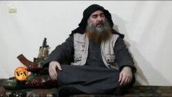 کیا دہشت گرد تنظیمیں دوبارہ سر اٹھا رہی ہیں؟