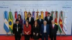 南美共同市場暫停巴拉圭會員資格