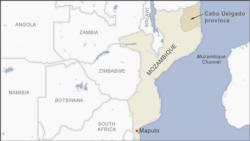 Países da África austral devem ajudar Moçambique a travar potencial jihadismo, dizem analistas