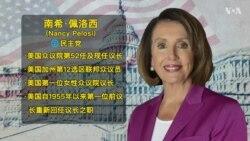 美国众议院议长南希·佩洛西简介