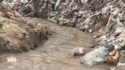 L'OMS tire la sonnette d'alarme sur l'eau contaminée