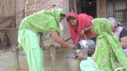 Successful Dairy Project by Women Entrepreneurs in India Breaks Barriers