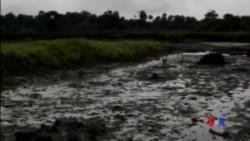2015-01-07 美國之音視頻新聞: 峴殼公司為尼日利亞漏油賠償8300萬美元