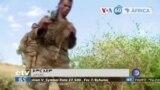 Manchetes africanas 30 Junho: Porta-voz da Frente Popular de Libertação do Tigray rejeitou cessar-fogo unilateral