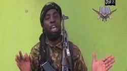 伊斯蘭國接受博科聖地的效忠宣誓