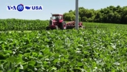 VOA60 America - Trump Administration to Offer Multibillion-Dollar Bailout for US Farmers