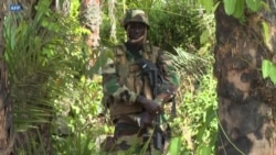 L'armée sénégalaise dit avoir pris des camps de la rébellion casamançaise