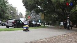 Burrito çatdıran robotlar küçələri işğal edib