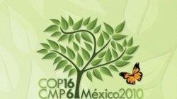 آغاز به کار کنفرانس آب و هوایی سازمان ملل در مکزیک
