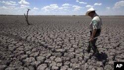 Рекордна суша во Тексас