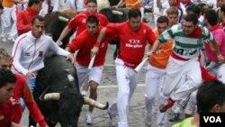 Los encierros de toros en Pamplona, España, se realizan ocho veces al año durante el popular festival de San Fermín.
