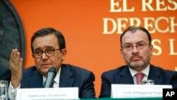 Министр иностранных дел Мексики Луис Видегарай (справа)