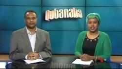 Qubanaha VOA, Nov. 13, 2014