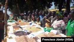 Vias de acesso podem comprometer comercialização agricola em Muembe
