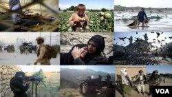 """پیش از این دیدبان حقوق بشر حکومت افغانستان را در زمینۀ تامین حقوق بشر """"ناکام"""" خوانده بود."""