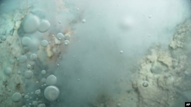 Image of bubbles of liquid carbon dioxide floating out of the seafloor at Champagne vent on Northwest Eifuku volcano in the western Pacific Ocean (File)