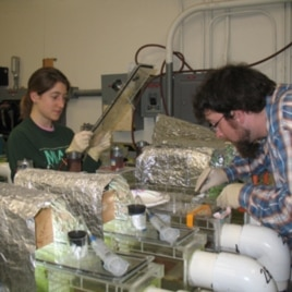 University of Michigan graduate students monitor a water quality experiment.