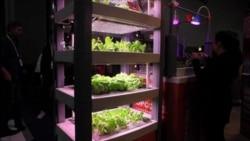 Vegetales controlados con su celular